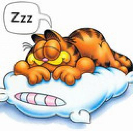 ... - Fotoalbum - animované - animované-pohádkové - Garfield%202.jpg